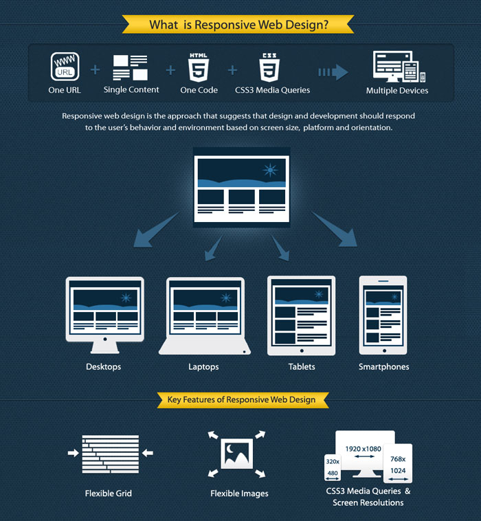 responsive-web-design-infographic-des1